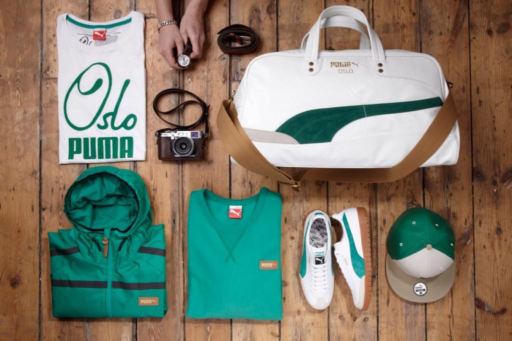 Puma_Wood01