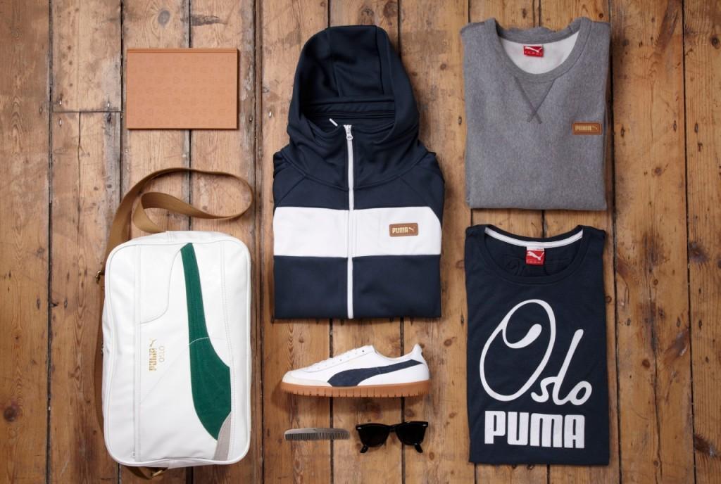 Puma_Wood03